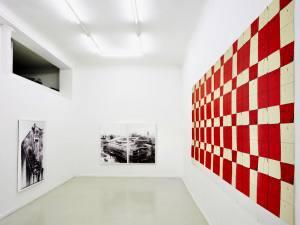 Galerie Eva Vautier, art contemporain à Nice (Nicolas DAUBANES)