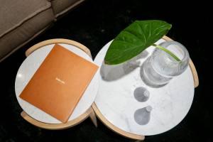 Bolia boutique deco design scandinave à Nice table basse