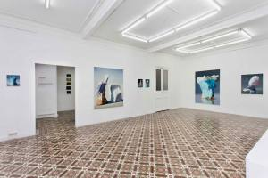 Espace vendre galerie d'art contemporain à Nice salle