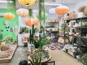 Boho, jardinerie et concept-store végétal à Nice (luminaire)