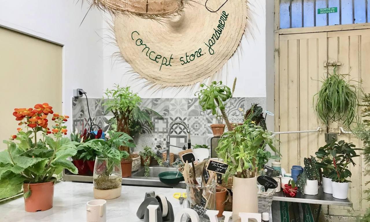 Boho, jardinerie et concept-store végétal à Nice (comptoir)