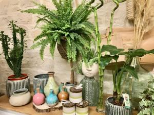 Boho, jardinerie et concept-store végétal à Nice (vases)