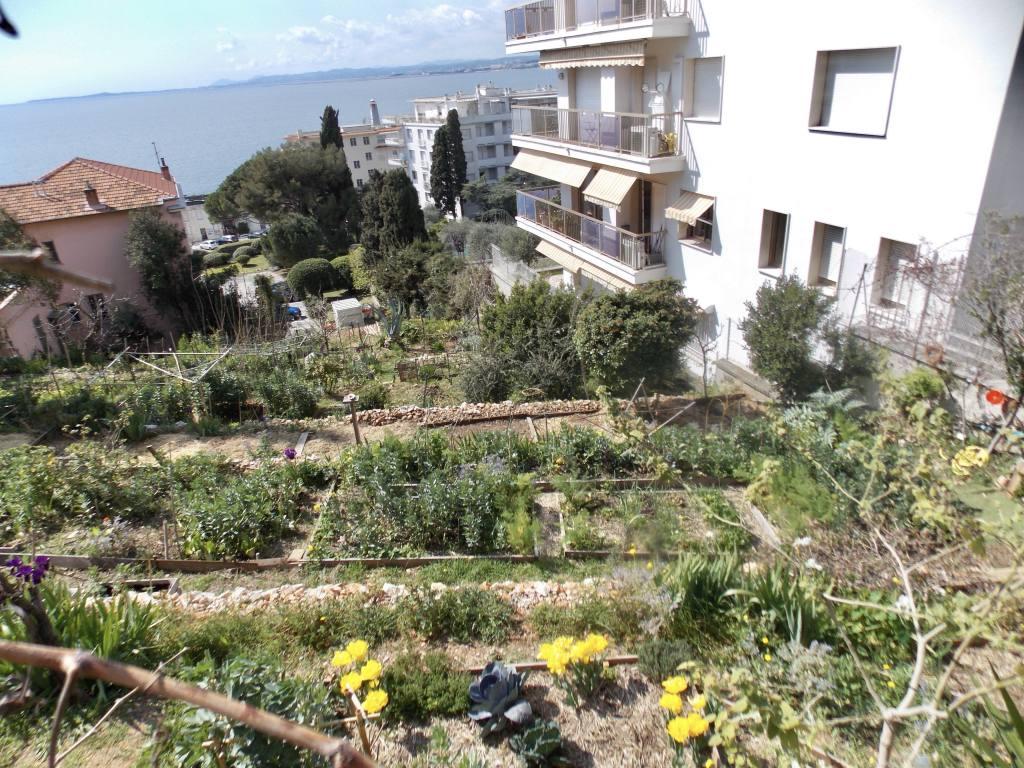 Mont Boron, colline à Nice (jardin potager)