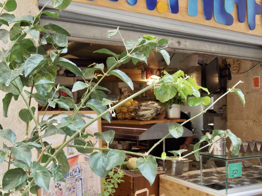 Pita Falafel Nice (ambiance)