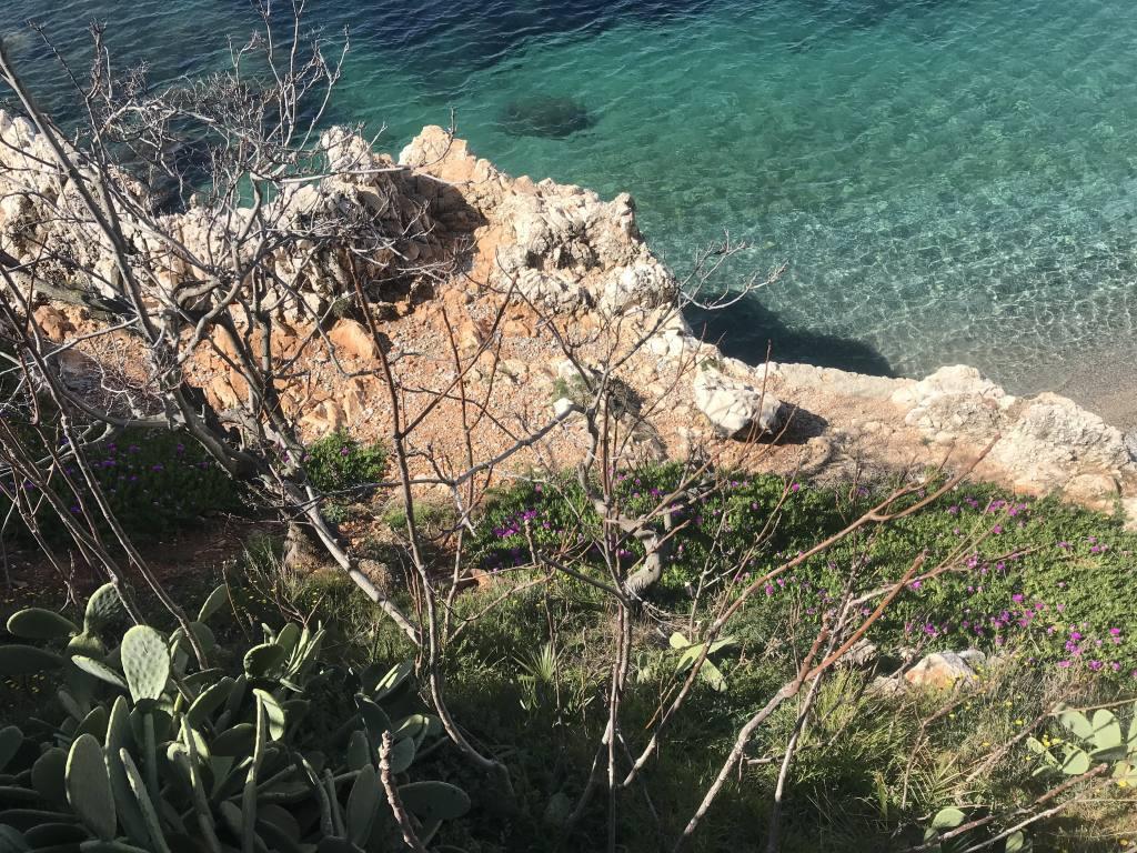 Sentier du Littoral à Nice (nature)