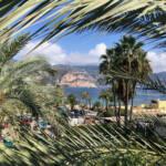 Saint-Jean-Cap-ferrat, lieu de villégiature (palmiers)