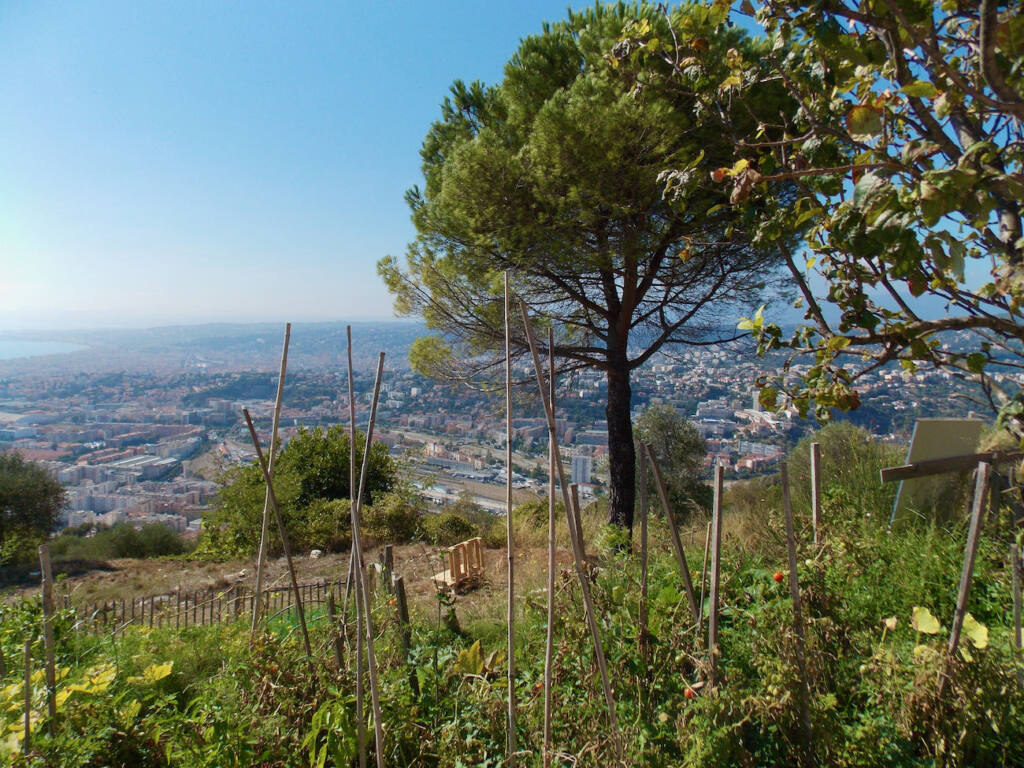 Observatoire de la Côte d'Azur, site scientifique à Nice (jardins)